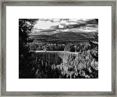 Alder Dam Near Mt Rainer Wa Framed Print