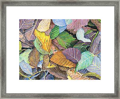 Alder Leaves And Faerie Framed Print