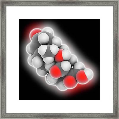 Aldosterone Hormone Molecule Framed Print