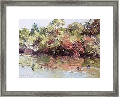 Alemada Wetland II Framed Print by Carol Hopper