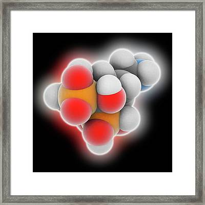 Alendronic Acid Drug Molecule Framed Print by Laguna Design