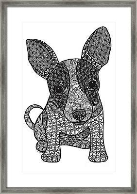 Alert - Chihuahua Framed Print by Dianne Ferrer