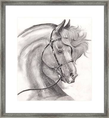 Alertness Plus Framed Print by Mary Armstrong