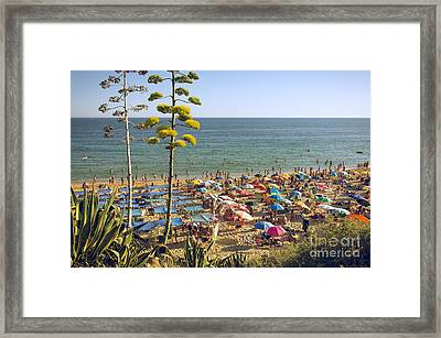 Algarve Beach Framed Print by Carlos Caetano