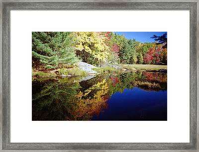 Framed Print featuring the photograph Algonquin Reflection by David Porteus