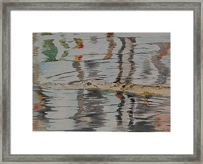 Ali The Alligator Framed Print