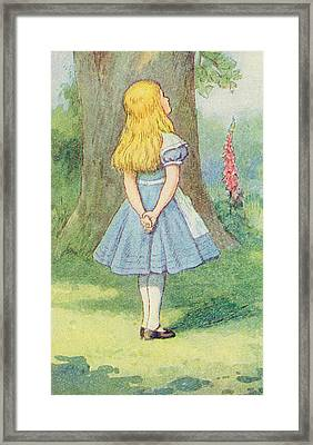 Alice In Wonderland Framed Print by John Tenniel