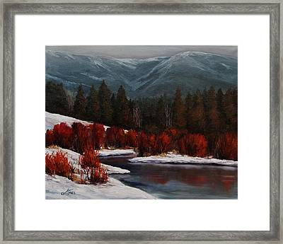 Alice Creek Framed Print by Suzanne Tynes