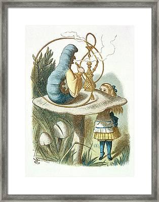 Alice Meets The Blue Caterpillar Framed Print