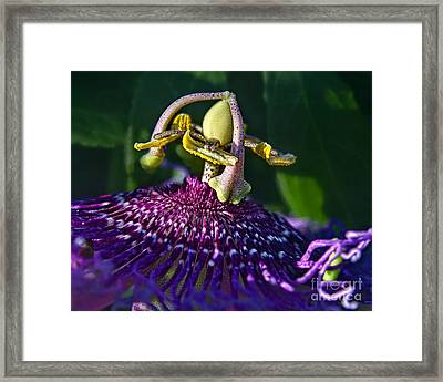 Alien Landing Framed Print