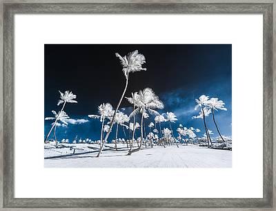 Alien Palm Trees Framed Print
