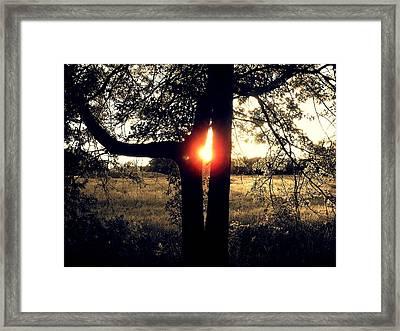 Alien Sunset Framed Print by John Carncross