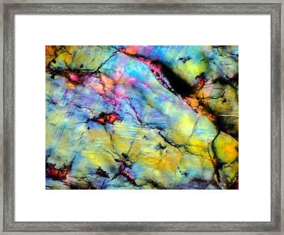 Alien Framed Print by Tom Phillips