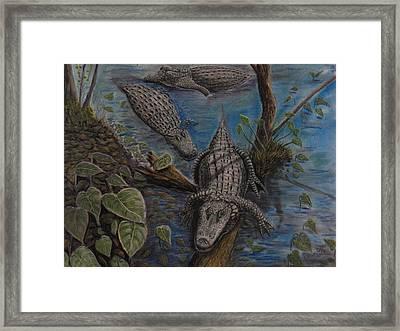 Aligators At Rest Framed Print by Richard Goohs