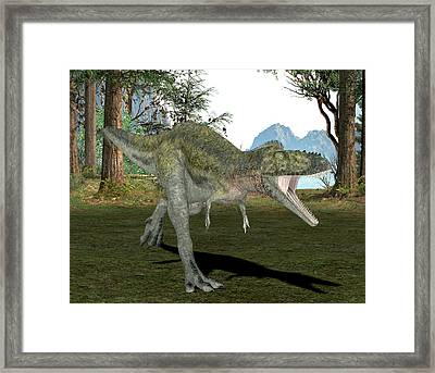 Alioramus Dinosaur Framed Print by Friedrich Saurer