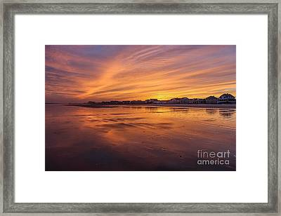 Alive With Color Framed Print by Joe Faragalli