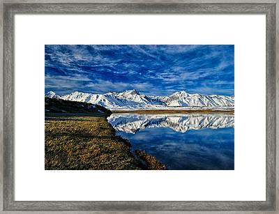 Alkali Pond Reflection Framed Print by Cat Connor