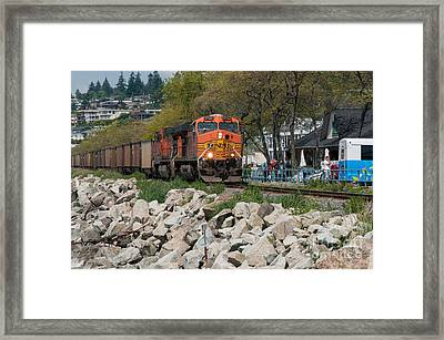 All Aboard Framed Print by Malu Couttolenc