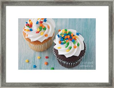 All About The Sprinkles Framed Print by Kay Pickens