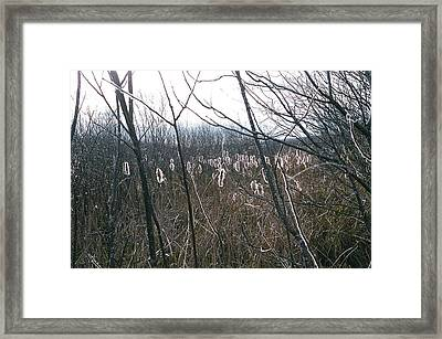 Framed Print featuring the photograph All Aglow by David Porteus