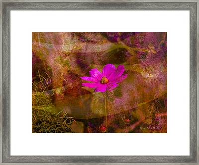 Framed Print featuring the digital art All Alone by J Larry Walker