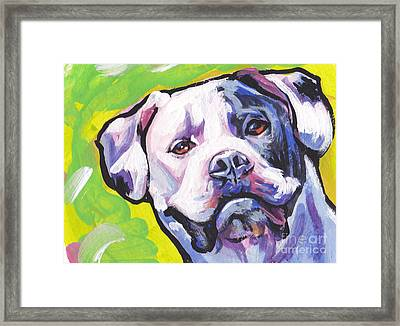 All American Bully Framed Print by Lea S