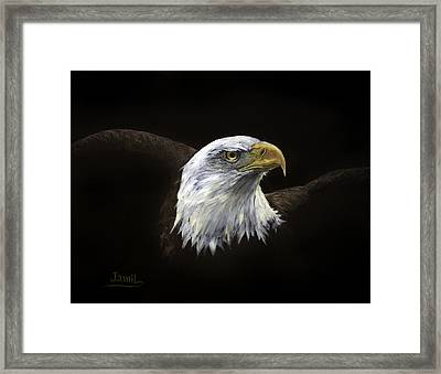 All American Framed Print by Jamil Alkhoury