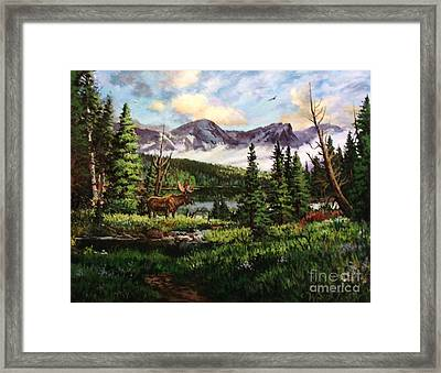 All Clear Framed Print by W  Scott Fenton