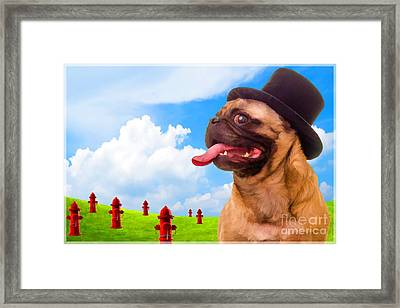 All Dogs Go To Heaven Framed Print by Edward Fielding