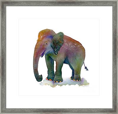 All Dressed Up Framed Print by Amy Kirkpatrick