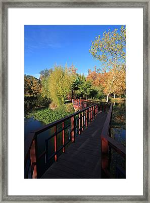 All For You Framed Print by Laurie Search