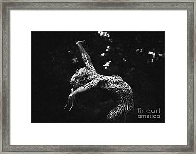 All From One Monochrome Framed Print by Tim Gainey