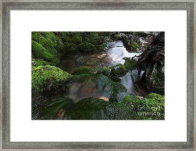 All Good Things In All Good Time Framed Print