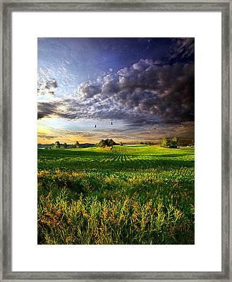 All I Need Framed Print by Phil Koch
