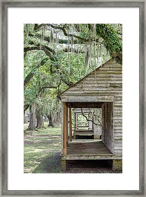 All In A Row Framed Print