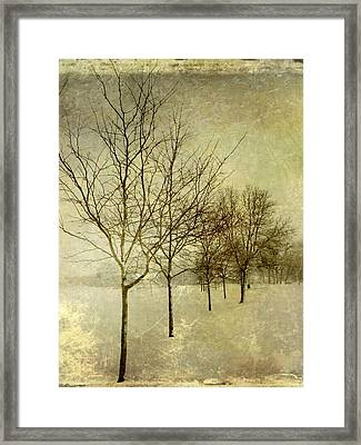 All In A Row Framed Print by Leah Moore