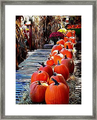 All  In A Row  Framed Print by Rick Todaro