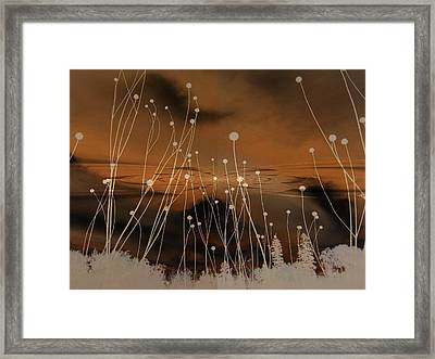 All Is Quiet Framed Print by Shirley Sirois