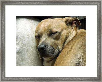 All Is Well Framed Print by Renee Trenholm