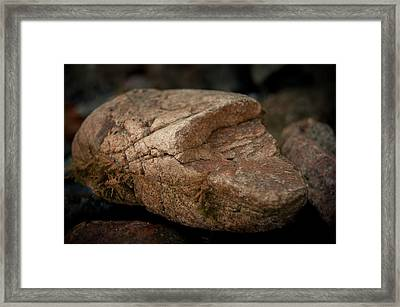 All It's Cracked Up To Be Framed Print by Jen Baptist