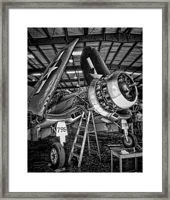 All Opened Up Framed Print by Dale Jackson