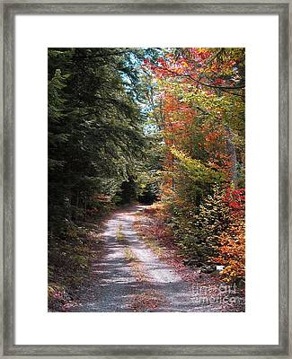 All Roads Lead Here Framed Print by Linda Marcille