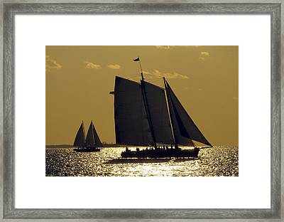 All Sails Sunset In Key West Framed Print