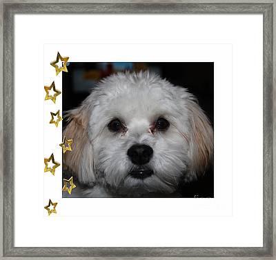 All Star Yoshi Framed Print