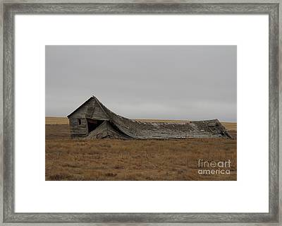 Framed Print featuring the photograph All That Remains by Ann E Robson
