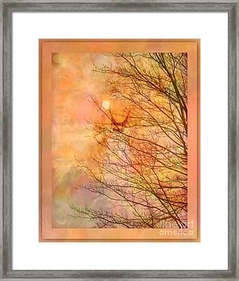 All The Colors Of The Moon Framed Print by Linda Galok
