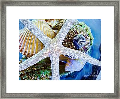 All The Colors Of The Sea Framed Print