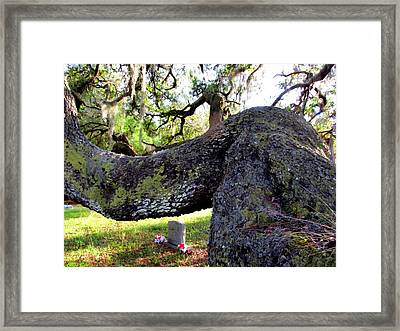 All Things Must Pass Framed Print by Buzz  Coe