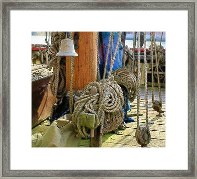All Tied Up Framed Print by Ron Harpham
