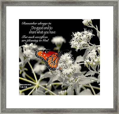 All Together Framed Print by David  Norman